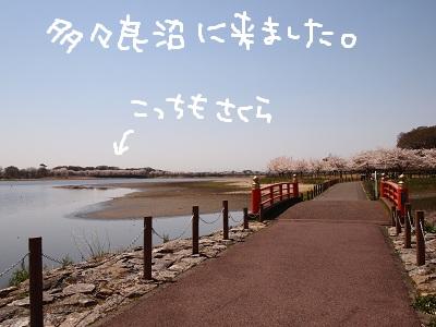 b0092580_0104798.jpg
