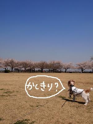 b0092580_018596.jpg