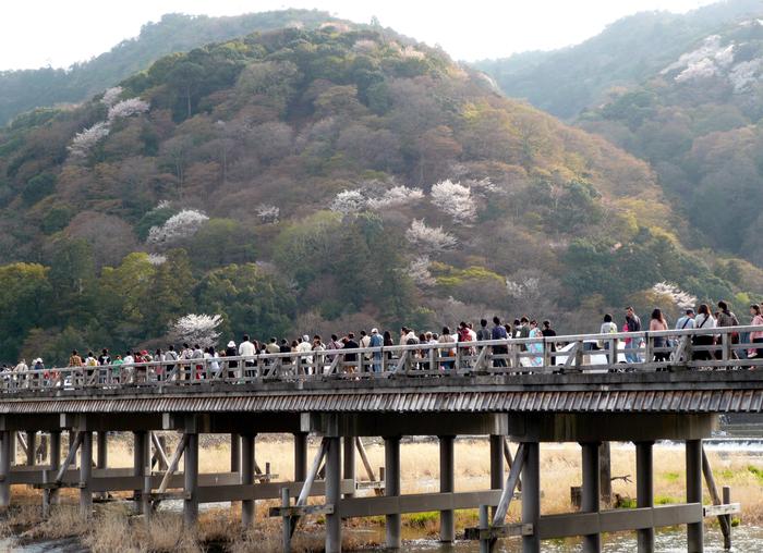 京都見物 5_b0093088_831146.jpg