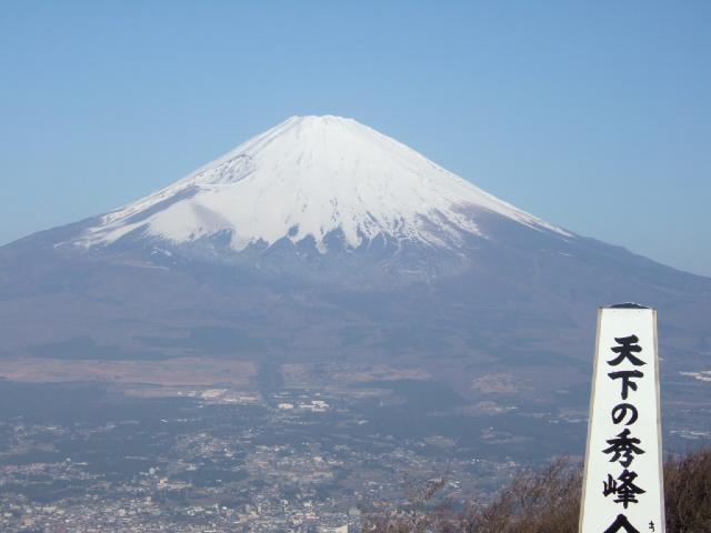箱根・金時山の花 Vol.68_e0024094_15241541.jpg