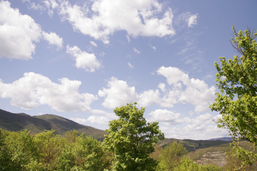 元気が出る畑~4月の畑_f0106597_417757.jpg