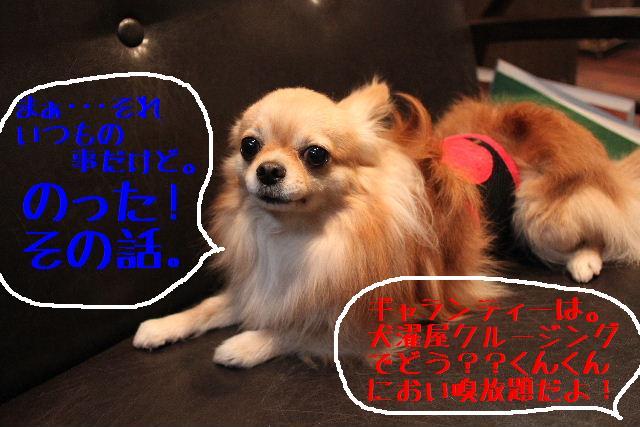 b0130018_1831116.jpg