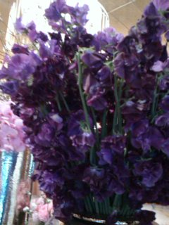 Purple flowers_f0126121_12121886.jpg