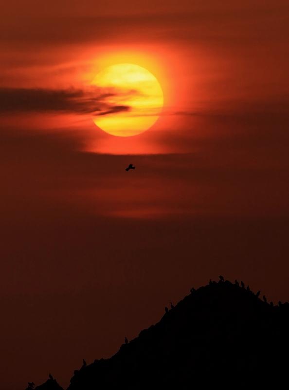 壁島の夕陽_d0074828_2359551.jpg