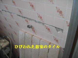 f0031037_16403181.jpg