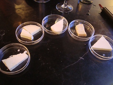 2011年チーズテイスティング_e0120938_311575.jpg