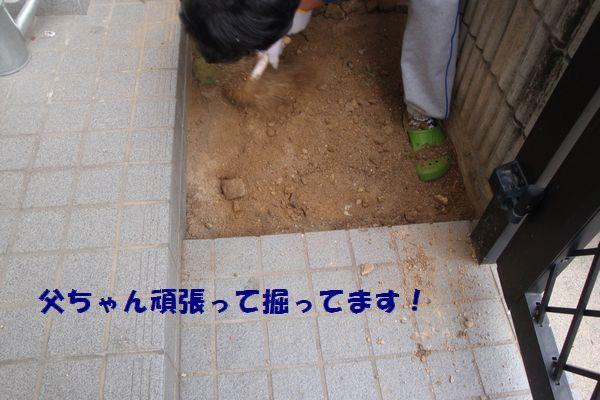 b0214647_09630.jpg
