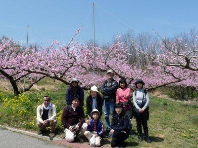 新府の桃は満開です♪_f0019247_23565891.jpg