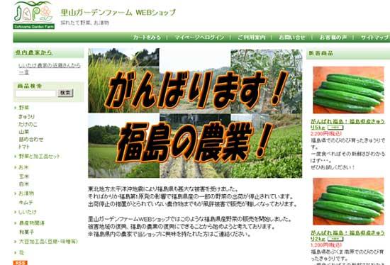 きゅうりキャンペーン_b0145486_11324828.jpg