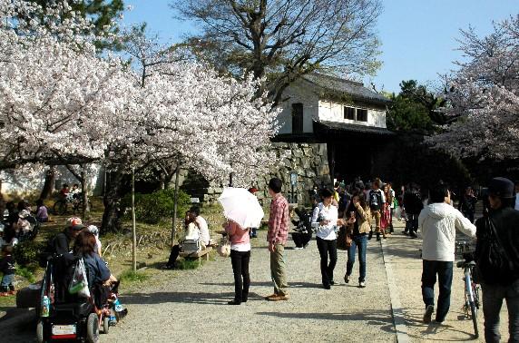 和歌山城散策  _b0093754_23454182.jpg