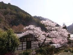 ツールド西上州 木古里の高橋さんちに泊まろう!_b0209774_22333443.jpg