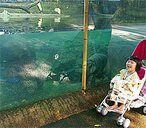 @Sigapore Zoo1_b0195783_1542482.jpg