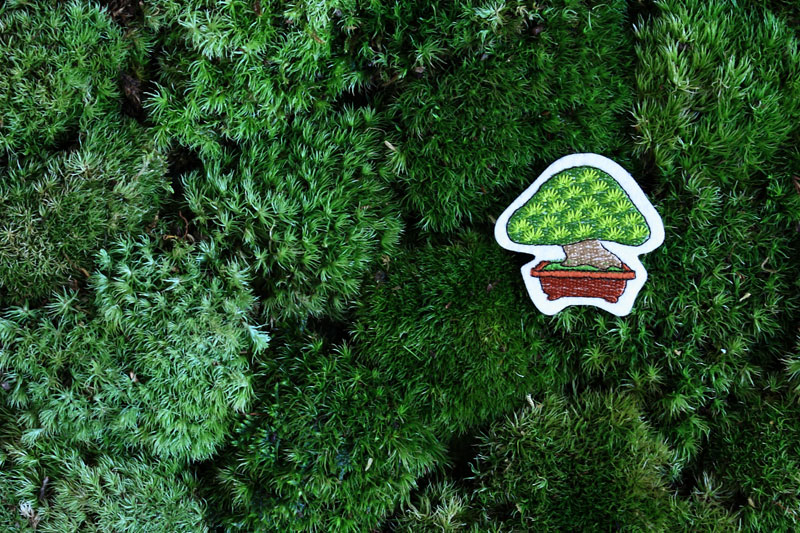 坪庭 Little Garden @SFT(スーベニアフロムトーキョー)_f0204300_1723197.jpg