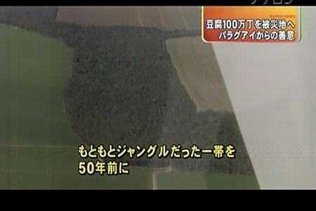 豆腐100万丁支援―東海テレビ『スーパーニュース』_d0063218_11521070.jpg
