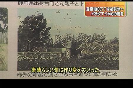 豆腐100万丁支援―東海テレビ『スーパーニュース』_d0063218_1154498.jpg