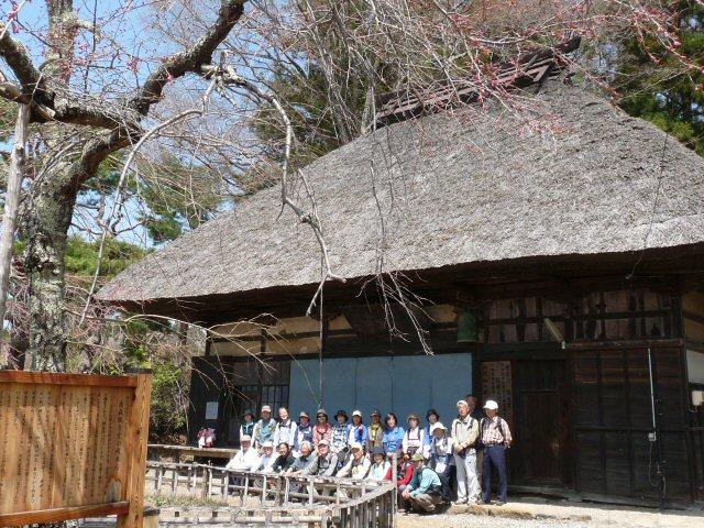 富士見の古木桜_f0019247_1714938.jpg