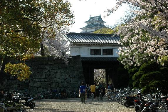 和歌山城散策  _b0093754_23462070.jpg