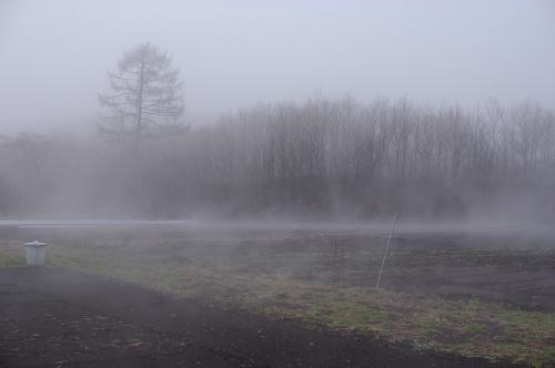 久々の雨、濃霧_c0110869_2242216.jpg