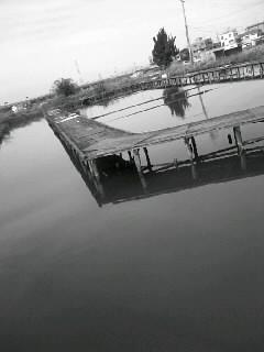 f0100480_1938198.jpg