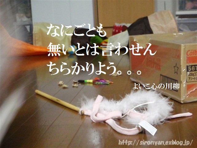 a0159490_15434773.jpg