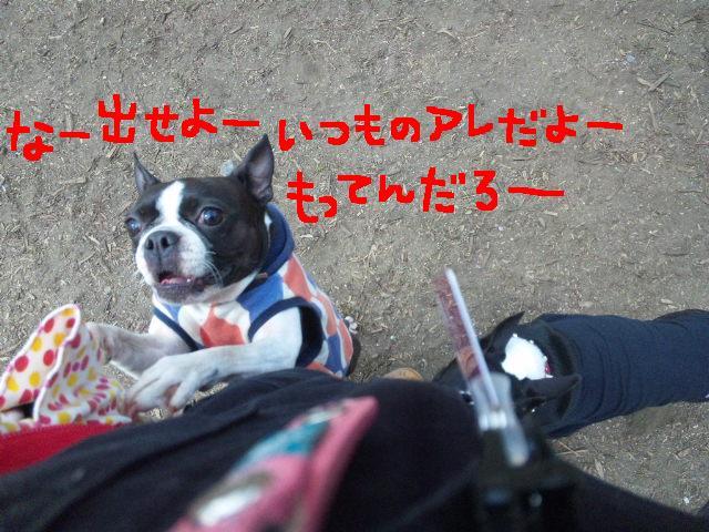 代々木公園に7白黒集合★_d0187891_1547245.jpg