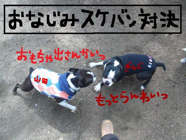 代々木公園に7白黒集合★_d0187891_1547283.jpg