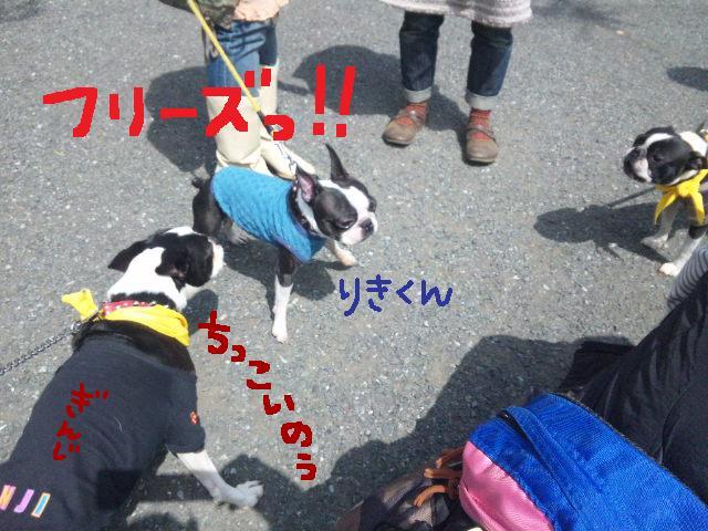代々木公園に7白黒集合★_d0187891_15484138.jpg
