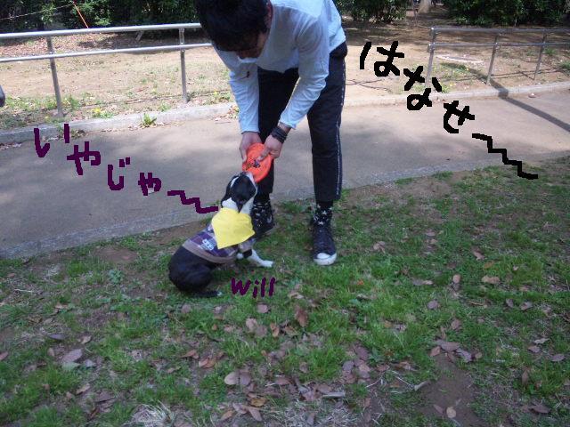 代々木公園に7白黒集合★_d0187891_15492255.jpg