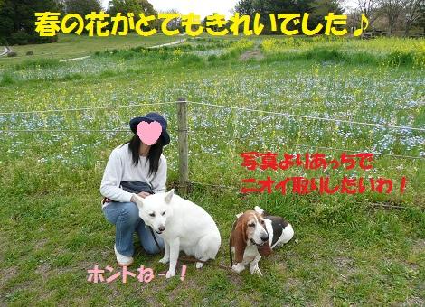 f0121712_024939.jpg