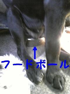 f0148927_22114131.jpg