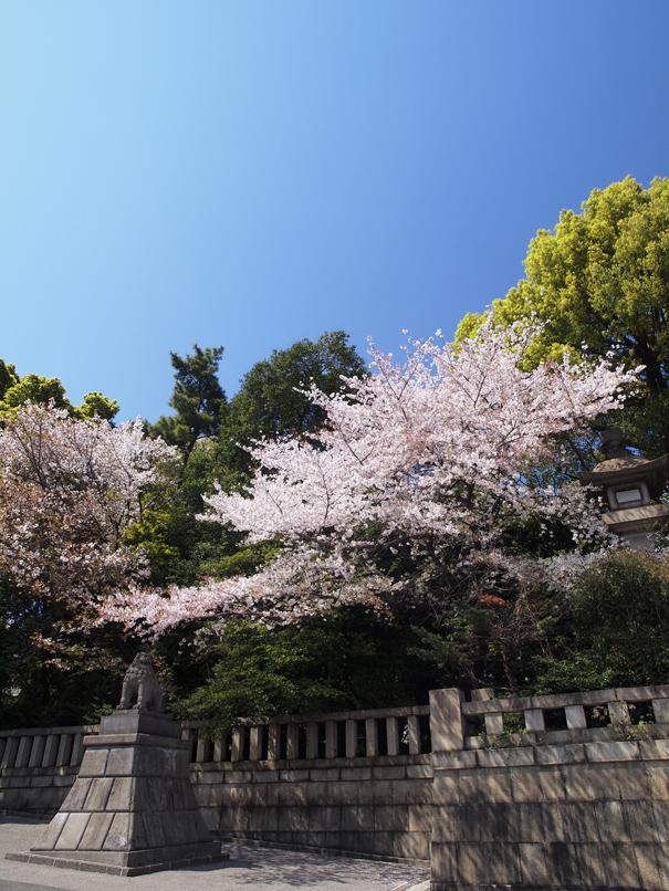 靖国神社_a0100959_237448.jpg