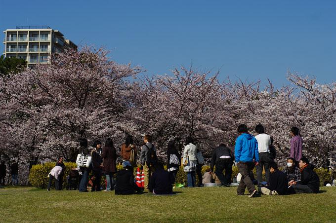 2011桜散歩 418 賑わい_e0082981_23404063.jpg