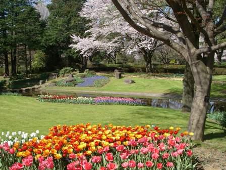 記念公園通信_b0172896_15305526.jpg