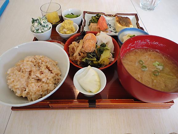 仙川へ_e0230011_19464094.jpg