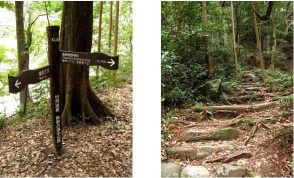 熊野古道編(8):乳岩(10.3)_c0051620_6161581.jpg