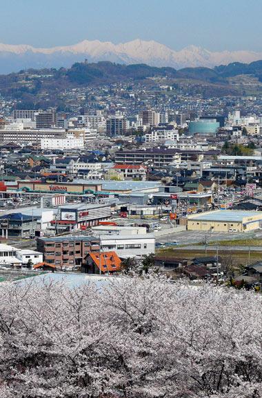 弘法山古墳の桜(松本市)_d0066822_1662956.jpg