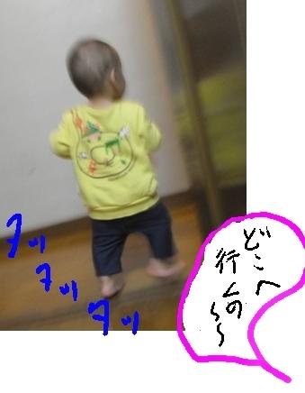 b0165336_16344518.jpg