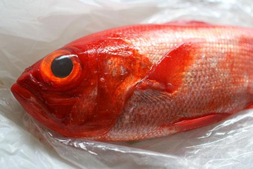 最近の夜ごはんは魚!!_c0182144_1642391.jpg