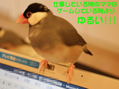 b0158061_21282287.jpg