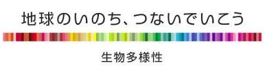 いきもの便り~ギンヤンマ~_e0197164_10311066.jpg