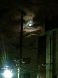 月が出た_d0126473_035292.jpg
