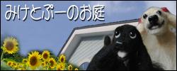 b0021297_22213176.jpg