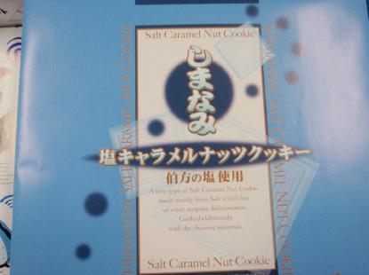 しまなみ海道チャレンジ ②_e0077899_5485761.jpg