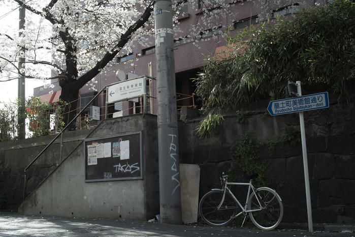 2011、六本木の桜、その2。_c0120903_129571.jpg