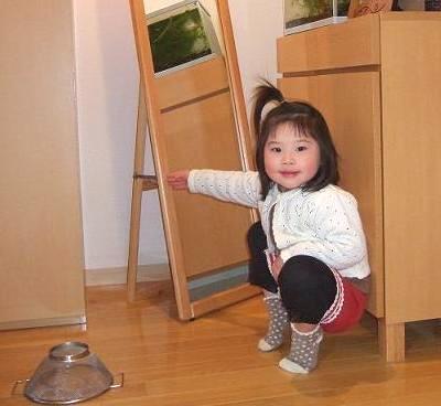 いきもの便り~ギンヤンマ~_e0197164_16461184.jpg