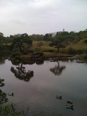 火の国熊本_a0077071_15363355.jpg