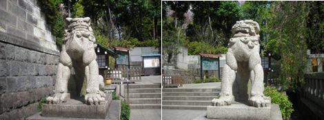 神社と狛犬その15・乃木神社_d0183174_19114986.jpg