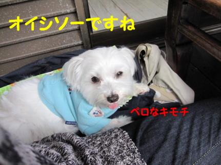 b0193480_15195656.jpg