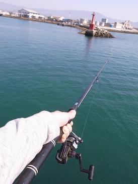 釣りとたこ焼き_f0202682_15223612.jpg