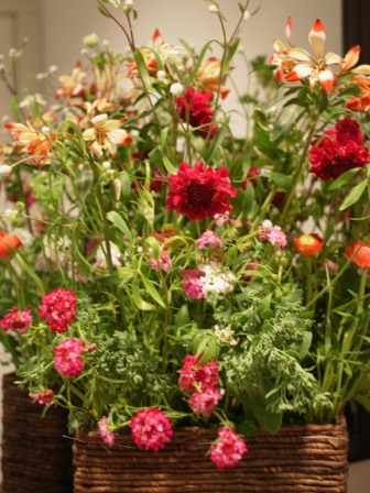 Le   jardin de campagne_e0013089_16162659.jpg